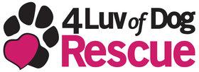 https://www.visionbanks.com/wp-content/uploads/4-Luv-Of-Dog-Rescue.jpg